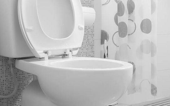 Uitstekende wc's op https://www.toiletmarkt.nl/